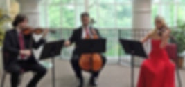Arco Music_String Trio copy.jpg
