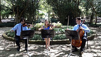 String trio, Lafayette