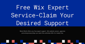 Free Wix Expert Service-Claim Your Desired Support