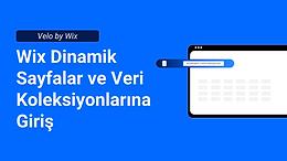 wix_üye_sayfalarını_ayarlama.jpg