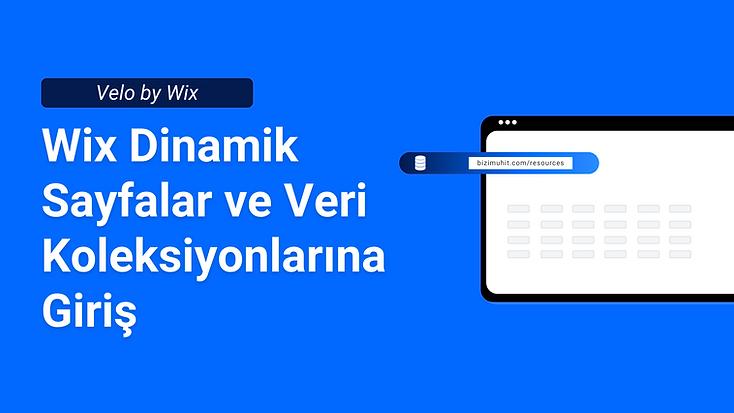 Wix dinamik sayfalar ve veri koleksiyonları nedir ve nasıl kullanılır sorularının cevabını bu rehberde öğreniyor olacaksınız. Bizim Muhit ile Wix web tasarımcısı olmayı öğrenin.
