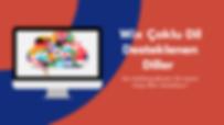 Wix Çoklu Dil Sistemi-Desteklenen Diller