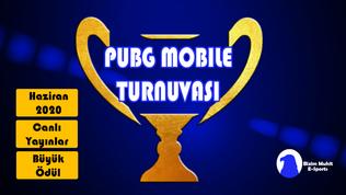 PUBG Mobile Türkiye Turnuvası 2020-Discord