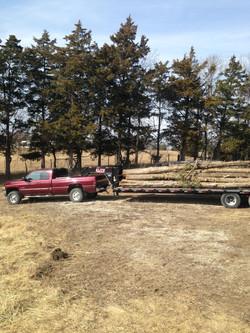 Timber Haul