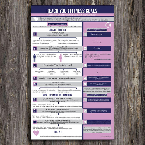 Infographic on Tracking Macros