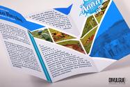 MUNICÍPIO DE RIO POMBA_folder-2-dobras_d