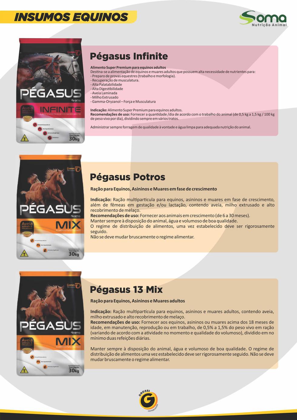 grossi_catálogo_2021_05_41.jpg