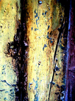 Die Tür #2