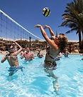Pool Volley Royal Albatros Moderna.jpg
