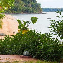 verde-tropicale-spiaggia-manga-soa-lodge