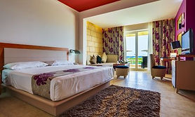 Deluxe_with_Private_Room_BARCELò.jpg