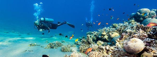Snorkeling in Dahab
