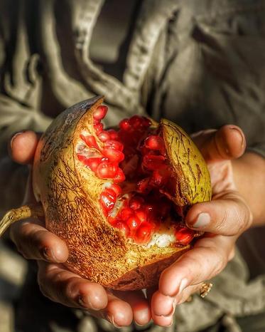 pomegranate-cilento-national-park-blue-b