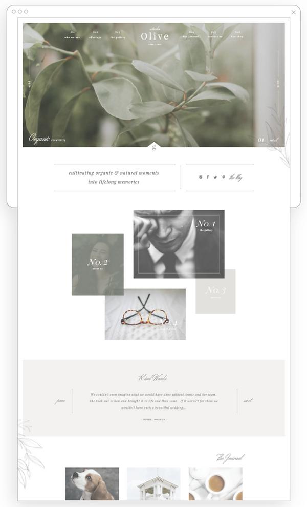 pad-scroll-website-template-olive-fine.p