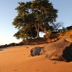 spiaggia-fine-manga-soa-lodge-madagascar
