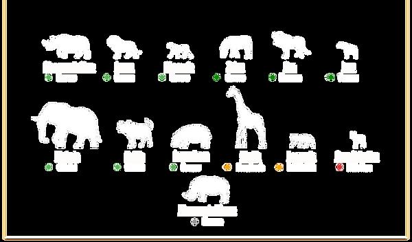 Animali ITA - AREA DI CONSERVAZIONE DI N