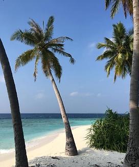 Private Beach.png