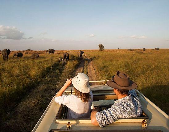 Serengeti Safari, Tanzania 3.jpg