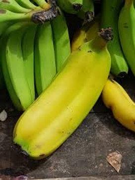 Plátano Tabasco ó Chiapas
