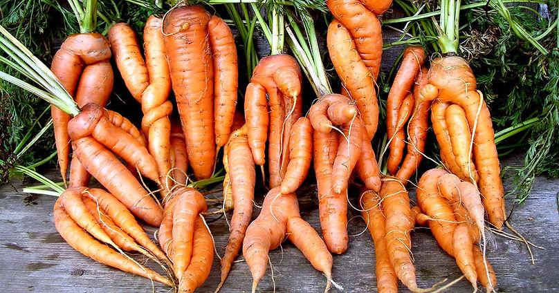 Deformed-Carrots-Reasons-FB.jpg