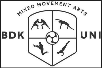budokon logo