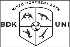 budokon logo.JPG