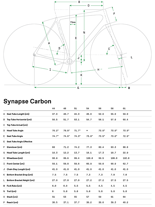 Synapse_Carbon_Geo_Table.png