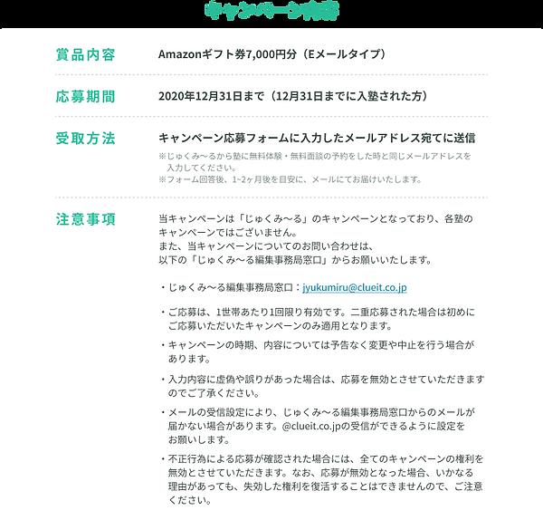 キャンペーン内容 (2).png
