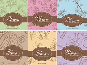 blossom all coffee picture.png