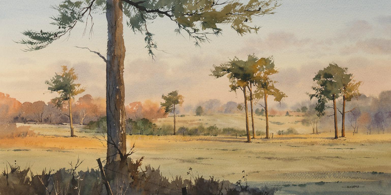 Scots Pines near Chelwood Vachery