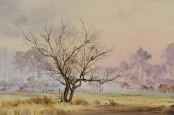The Winter Hawthorn