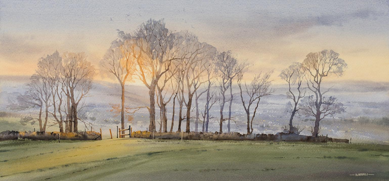 Evening Light on Cleeve Hill