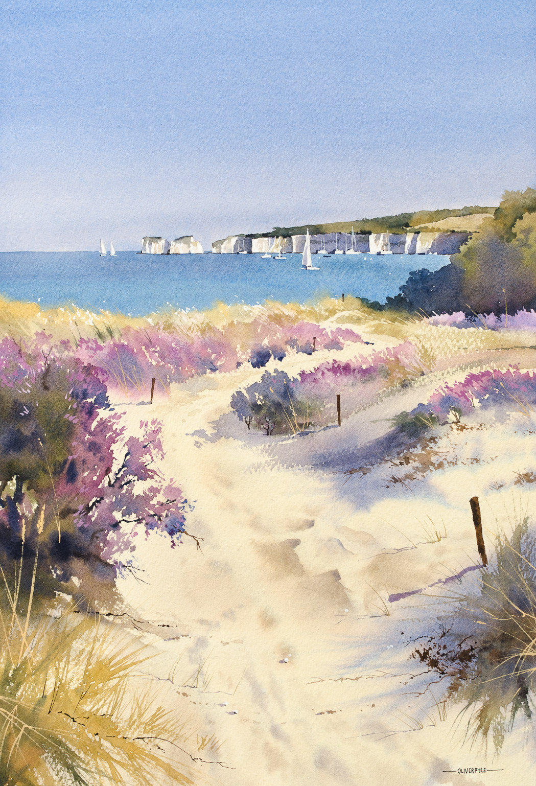 Summer Colours at Studland