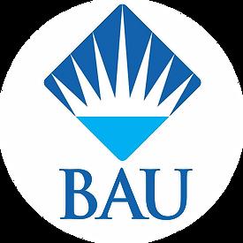 BAU.png