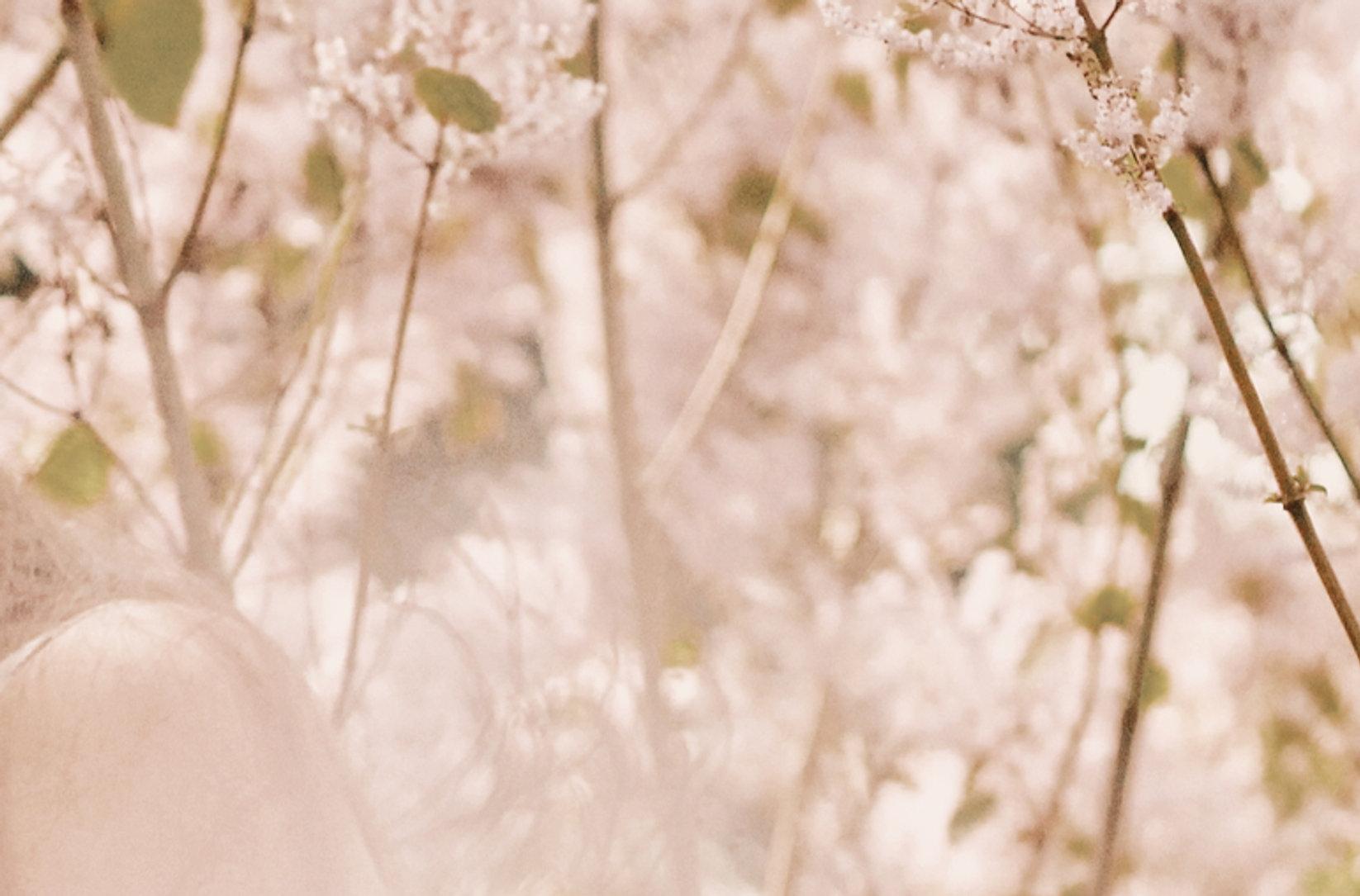 CYRA - PINK FLOWERS 12.jpg