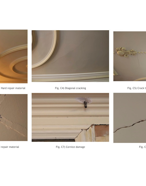 Plaster Ceilings Condition Report