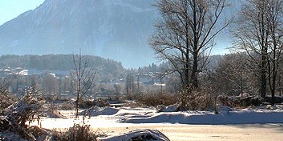 Ganztägige Winterexkursion am Thunersee