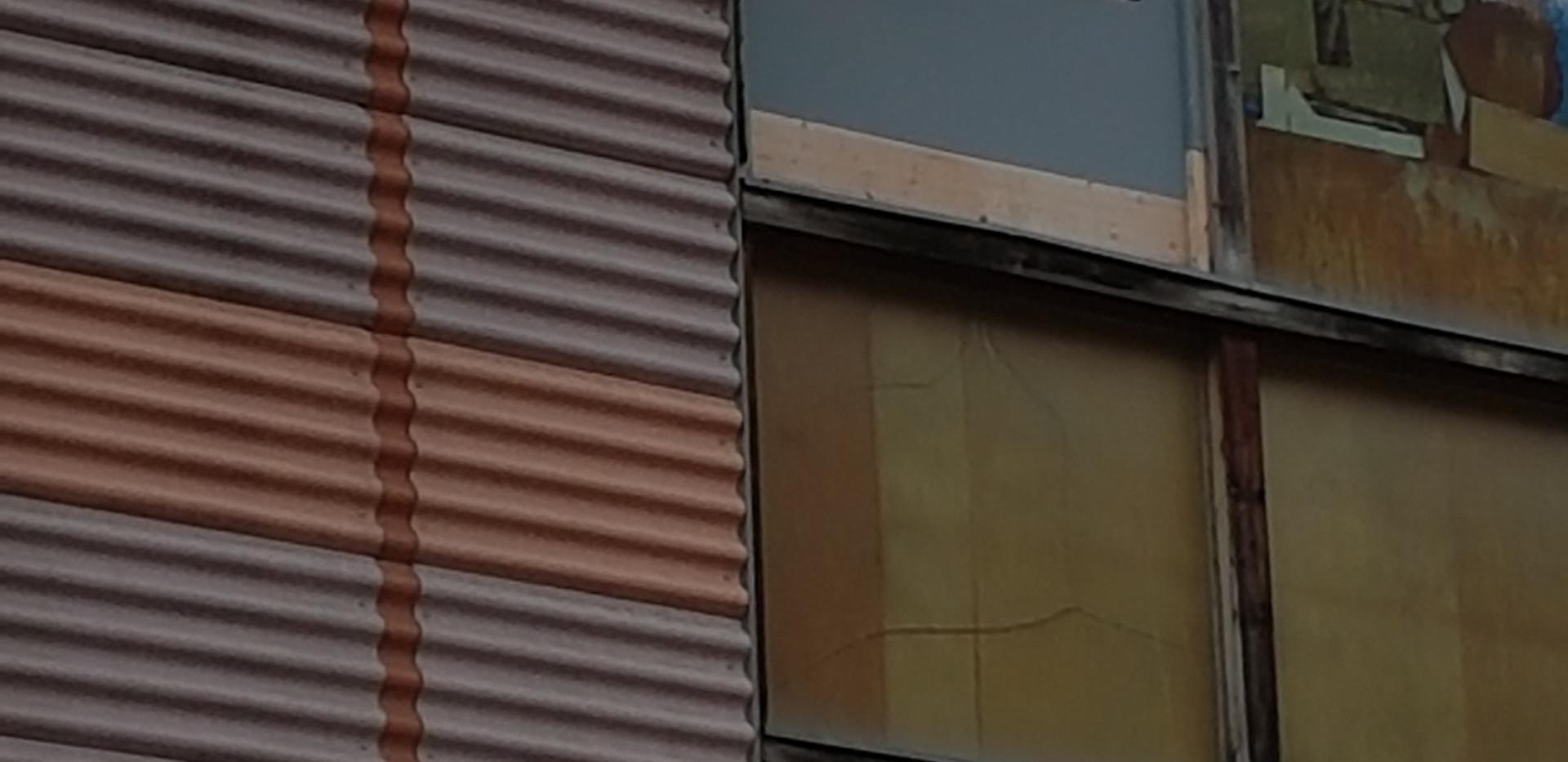 Turmfalke Olympica.jpg