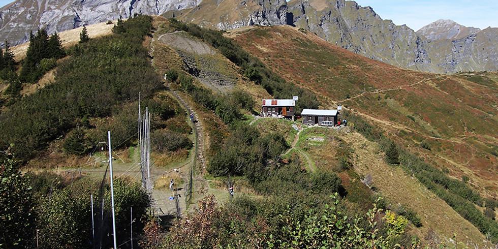 Ganztägige Zugvogelexkursion auf den Col de Bretolet