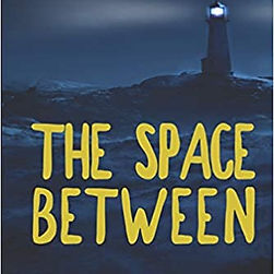 The Space Between cover.jpg