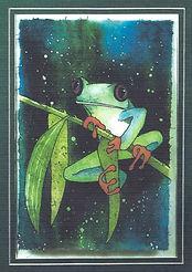 jungle frog (3).jpg