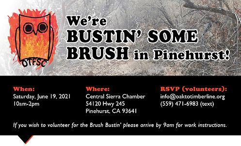 Bustin' some Brush social media card.jpg
