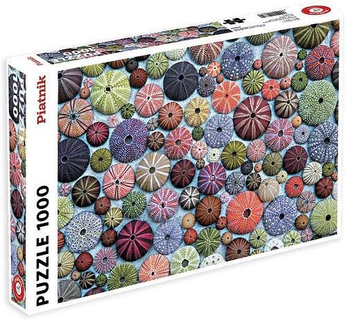 1000 Piece Puzzle - Sea Urchins