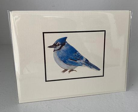 Blue Jay Notecard