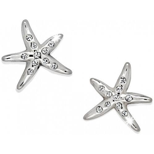 Brighton Cape Star Mini Post Earrings
