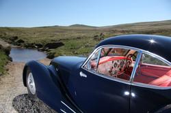 Petersen Dartmoor