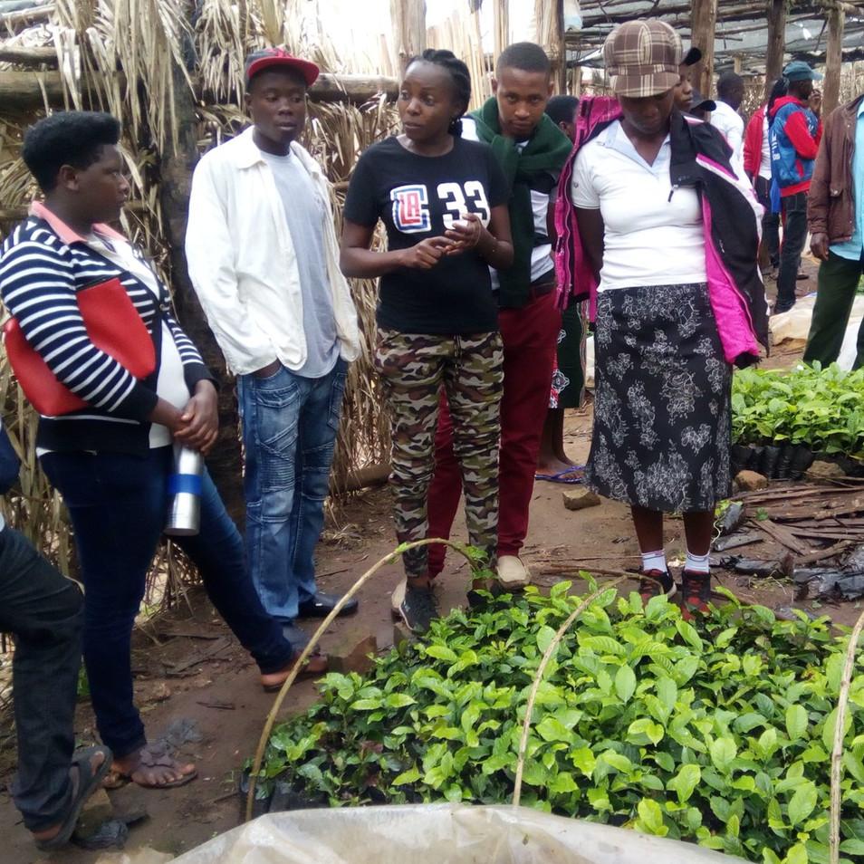 youth helps older farmers via a farm man