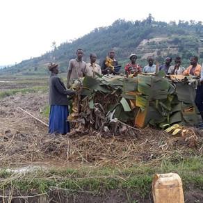 COMPOST MAKING, RWANDA