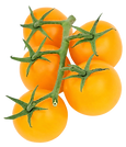 PNGPIX-COM-Yellow-Tomato-PNG-Transparent