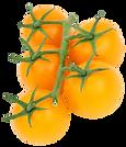 PNGPIX-COM-Yellow-Tomato-PNG-Transparent